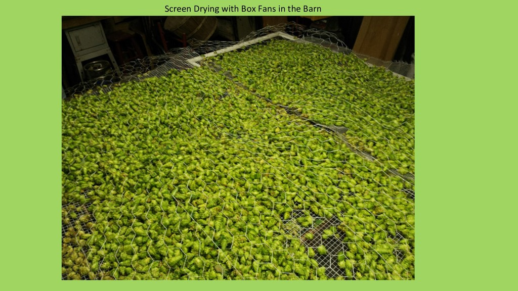 Screen Drying with Box Fans in the Barn
