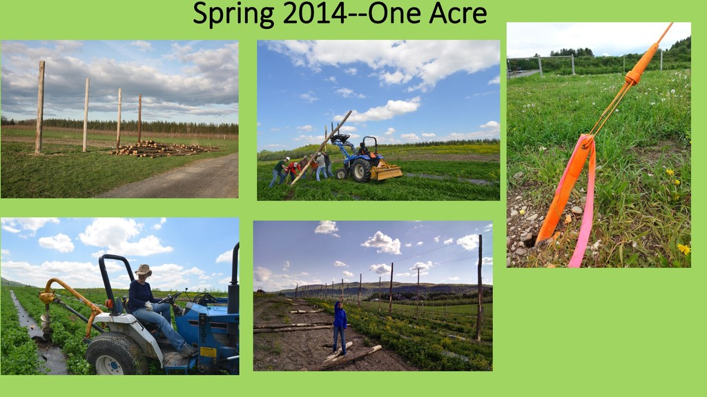 Spring 2014--One Acre