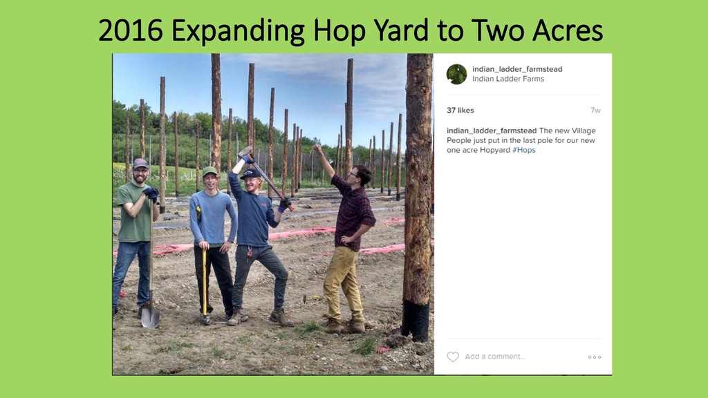 2016 Expanding Hop Yard to Two Acres