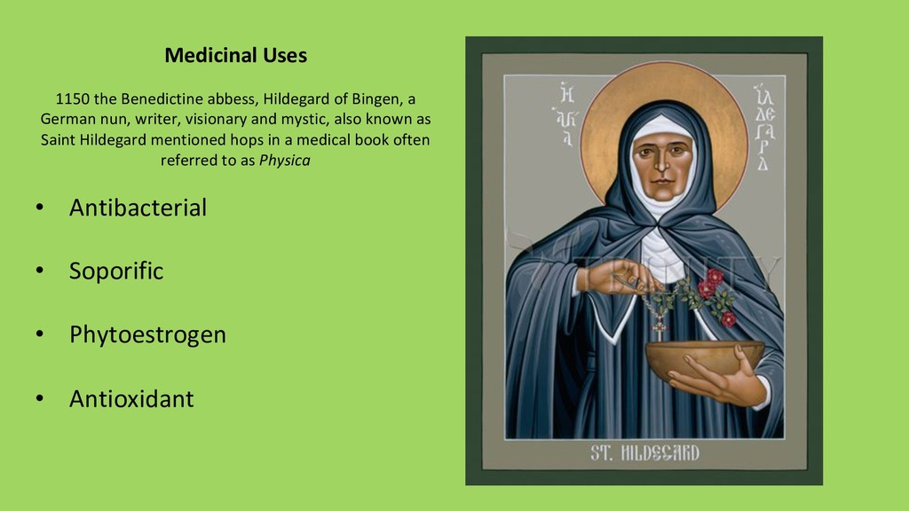 Medicinal Uses 1150 the Benedictine abbess, Hil...