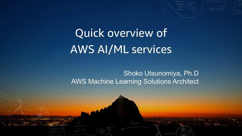 Quick overview of AWS AI/ML services Shoko Utsu...