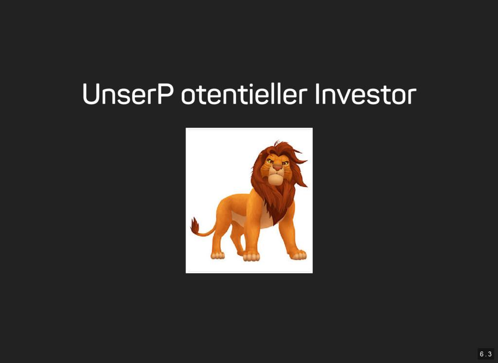 6 . 3 Unser Potentieller Investor