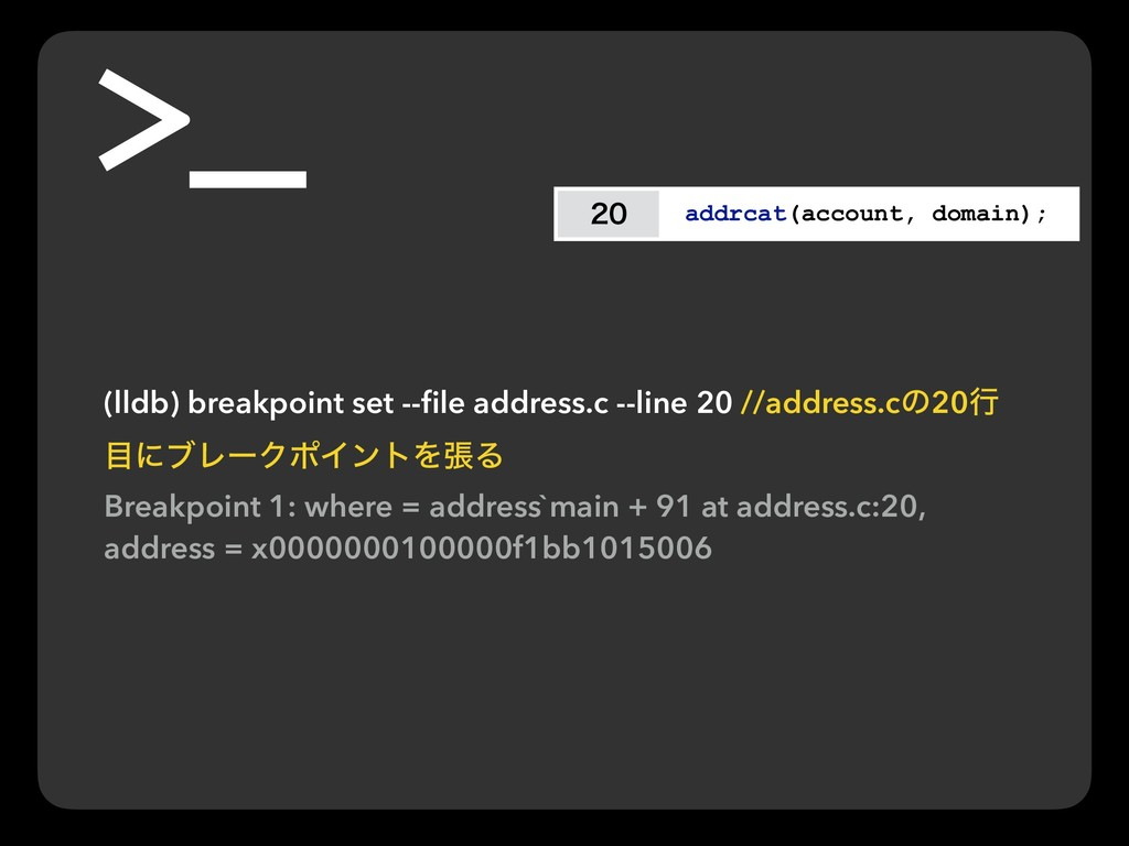 addrcat(account, domain); (lldb) breakpoint ...