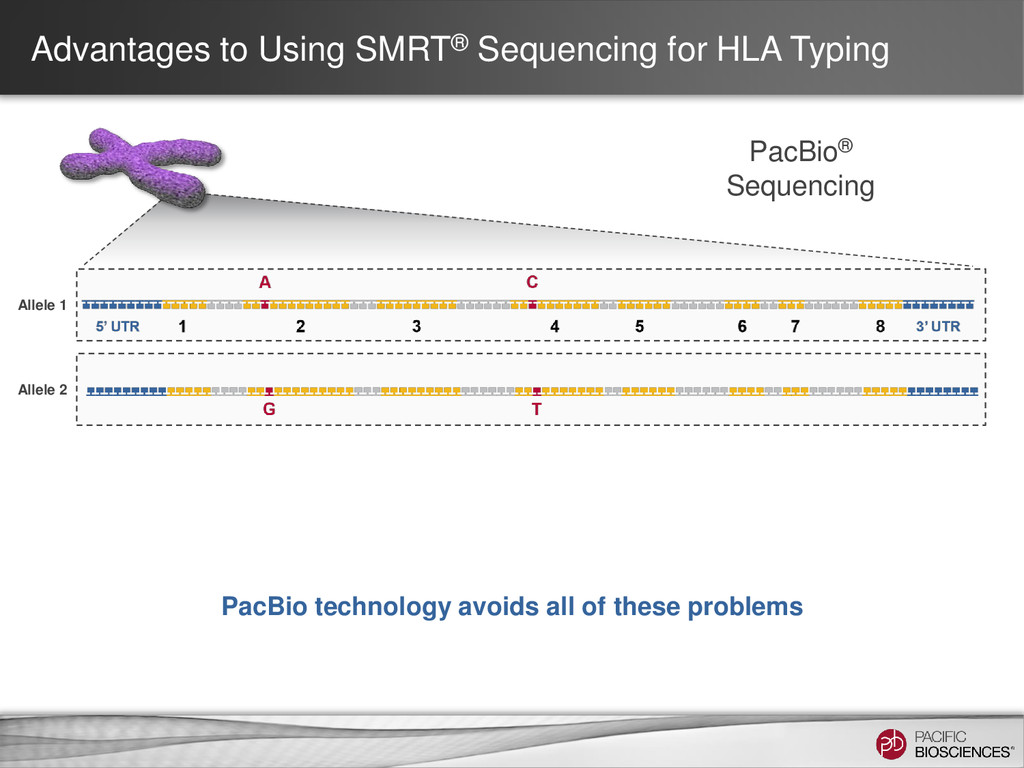 Allele 1 Allele 2 Advantages to Using SMRT® Seq...
