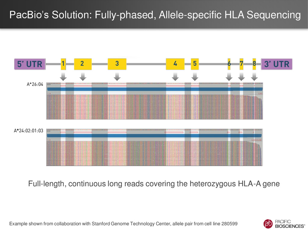 PacBio's Solution: Fully-phased, Allele-specifi...