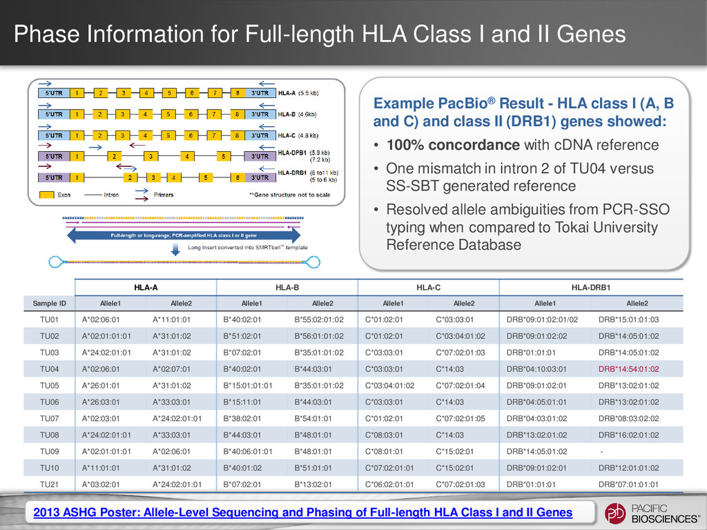 Phase Information for Full-length HLA Class I a...