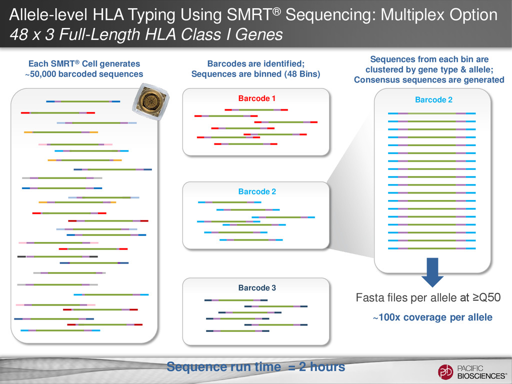 Allele-level HLA Typing Using SMRT® Sequencing:...