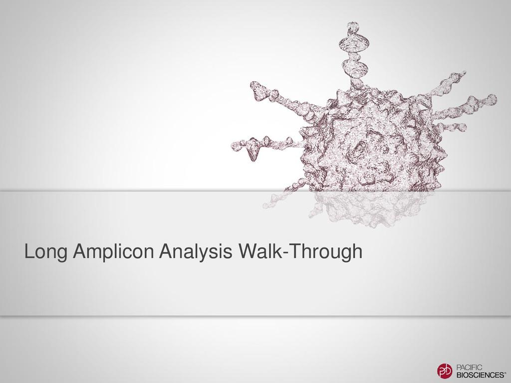 Long Amplicon Analysis Walk-Through