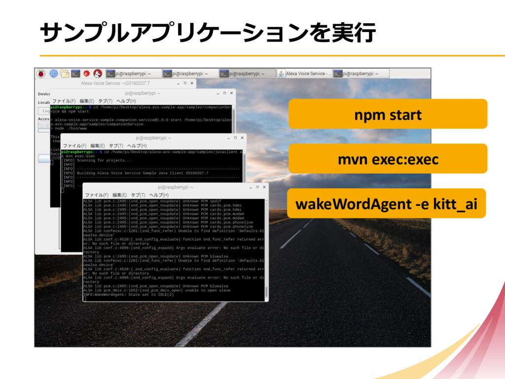 npm start mvn exec:exec wakeWor...