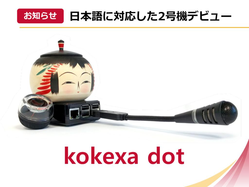 kokexa dot