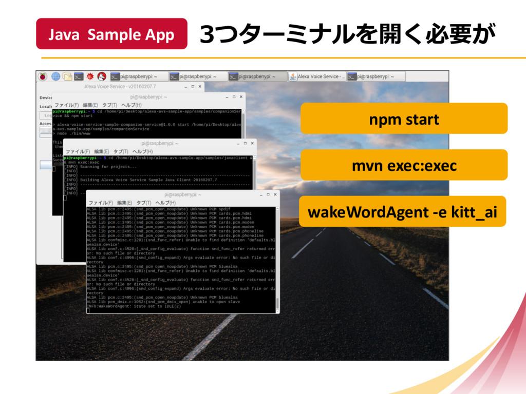 Java Sample App npm start mvn exe...