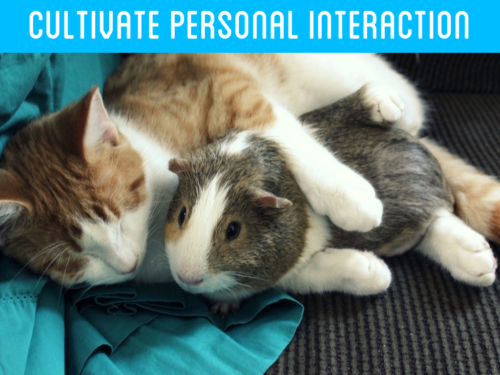 CULTIVATE PERSONAL INTERACTION