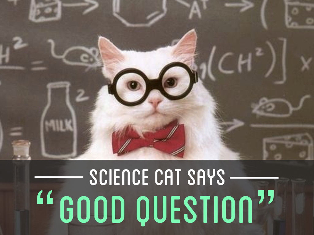 "SCIENCE CAT SAYS "" "" GOOD QUESTION"