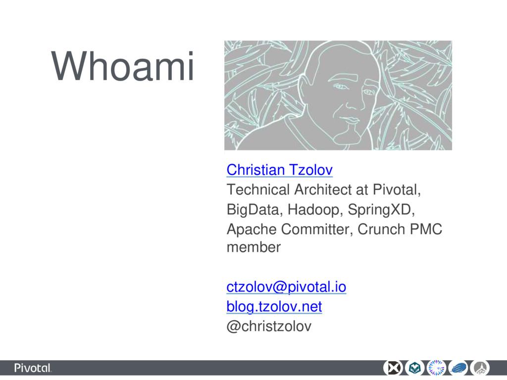 Whoami Christian Tzolov Technical Architect at ...
