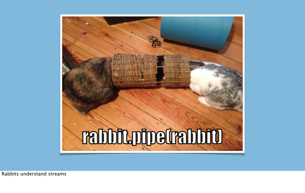 Rabbits understand streams