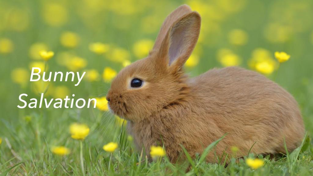Bunny Salvation
