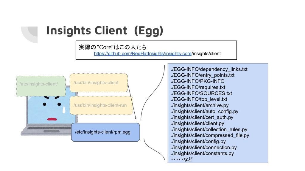 Insights Client (Egg) /usr/bin/insights-client ...