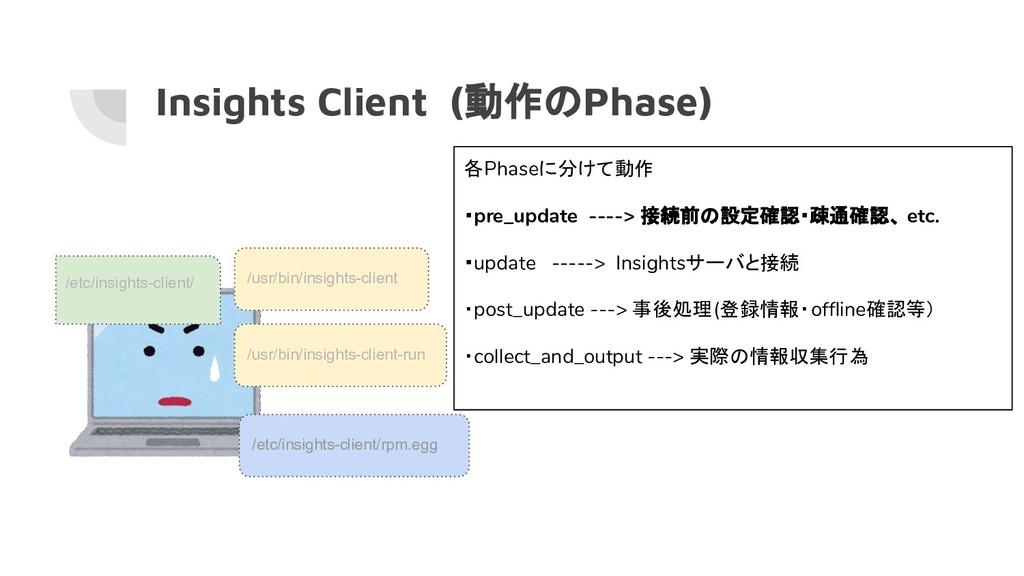 Insights Client (動作のPhase) /usr/bin/insights-cl...