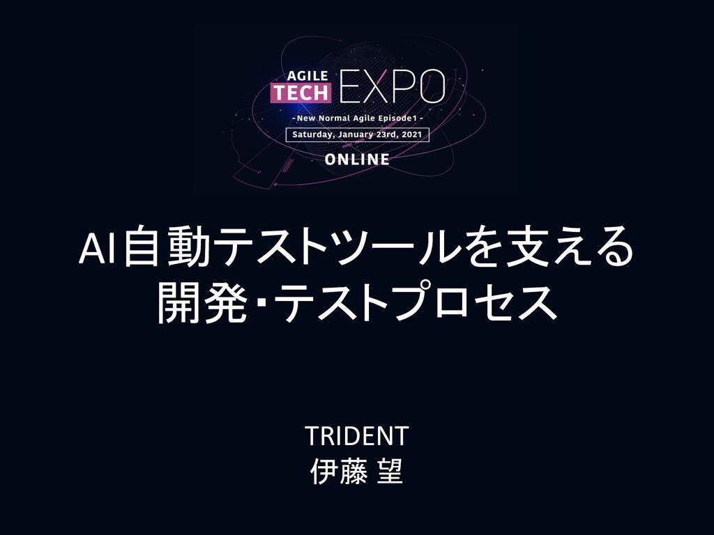 AI自動テストツールを支える 開発・テストプロセス TRIDENT 伊藤 望