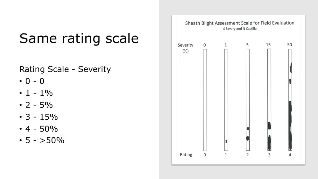 Same rating scale Rating Scale - Severity • 0 -...