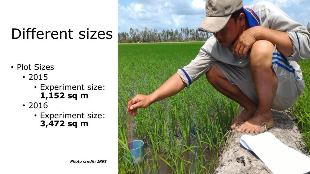 • Plot Sizes • 2015 • Experiment size: 1,152 sq...