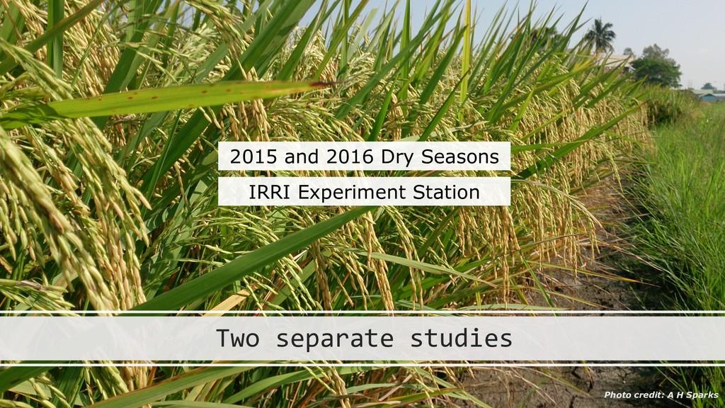 Two separate studies 2015 and 2016 Dry Seasons ...