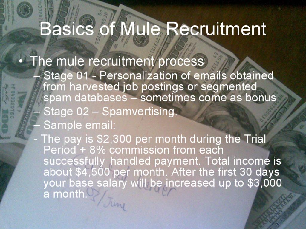 Basics of Mule Recruitment • The mule recruitme...