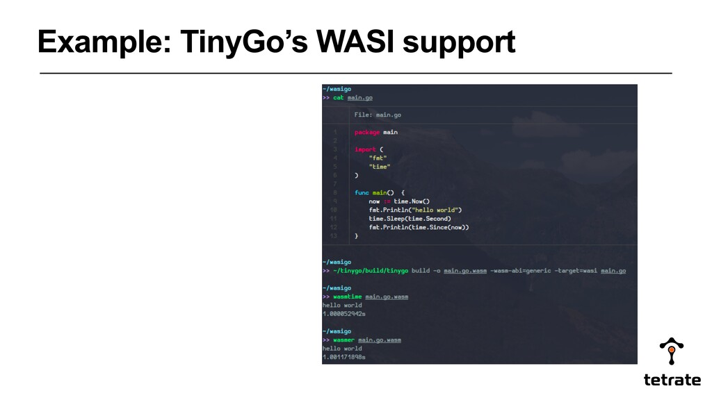 Example: TinyGo's WASI support
