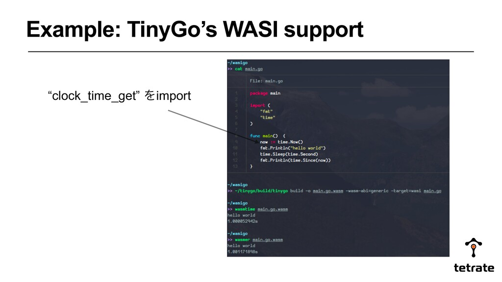 "Example: TinyGo's WASI support ""clock_time_get""..."