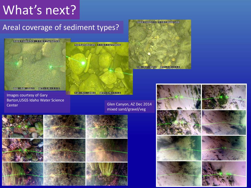 What's next? Images courtesy of Gary Barton,USG...