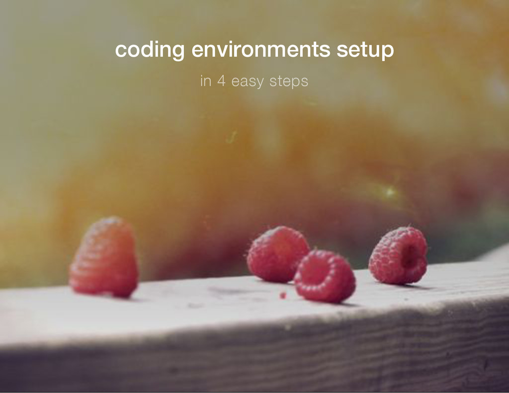coding environments setup in 4 easy steps