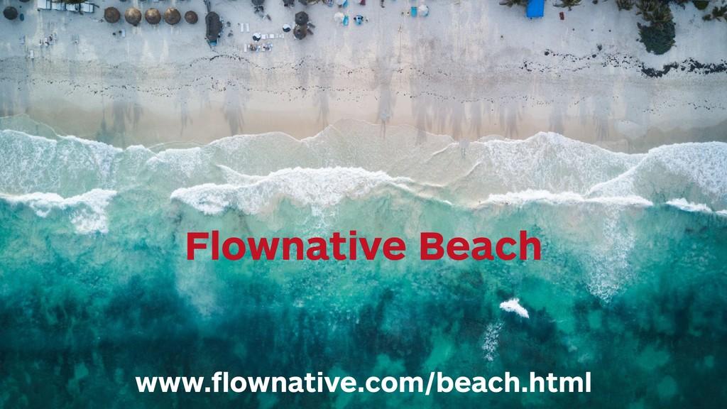 Flownative Beach www.flownative.com/beach.html