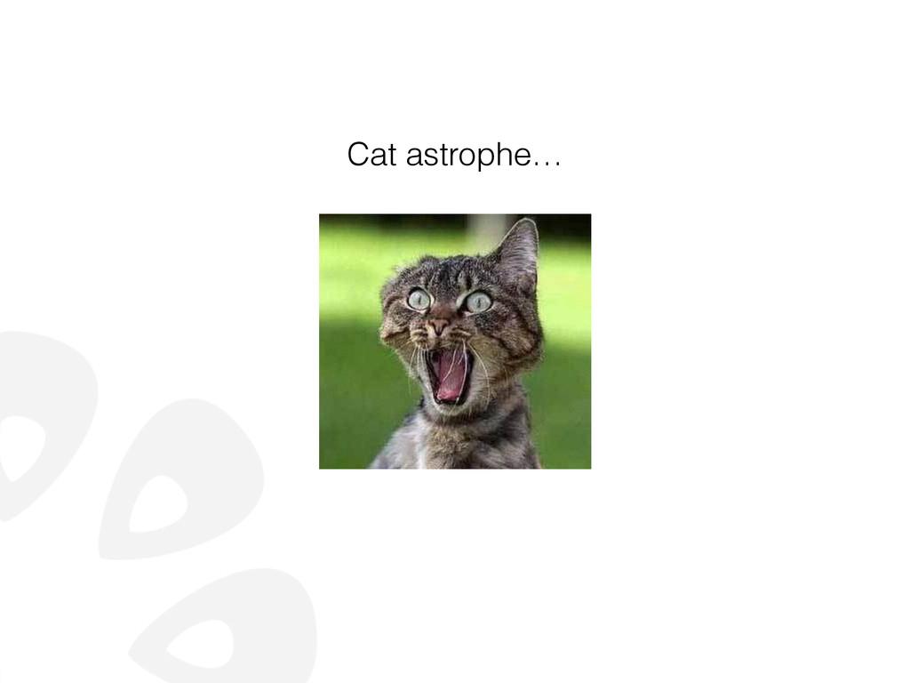 Cat astrophe…