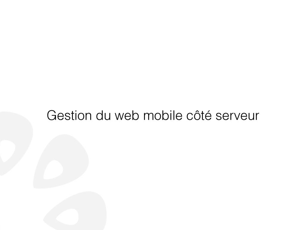 Gestion du web mobile côté serveur