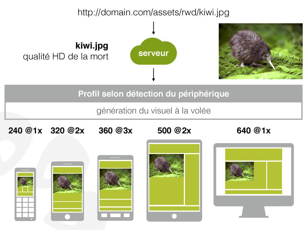 http://domain.com/assets/rwd/kiwi.jpg Profil sel...