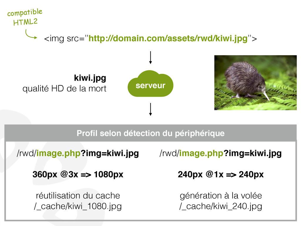 <img src=''http://domain.com/assets/rwd/kiwi.jp...