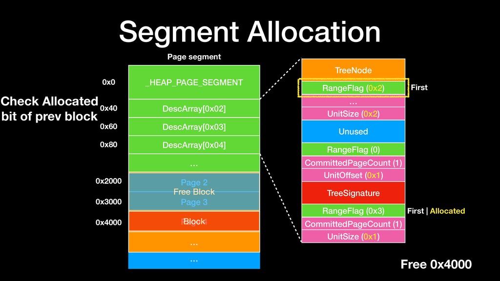 Segment Allocation … _HEAP_PAGE_SEGMENT DescArr...