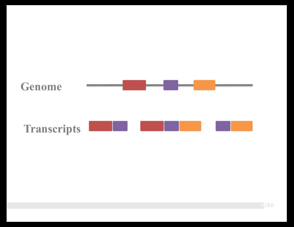 Genome Transcripts
