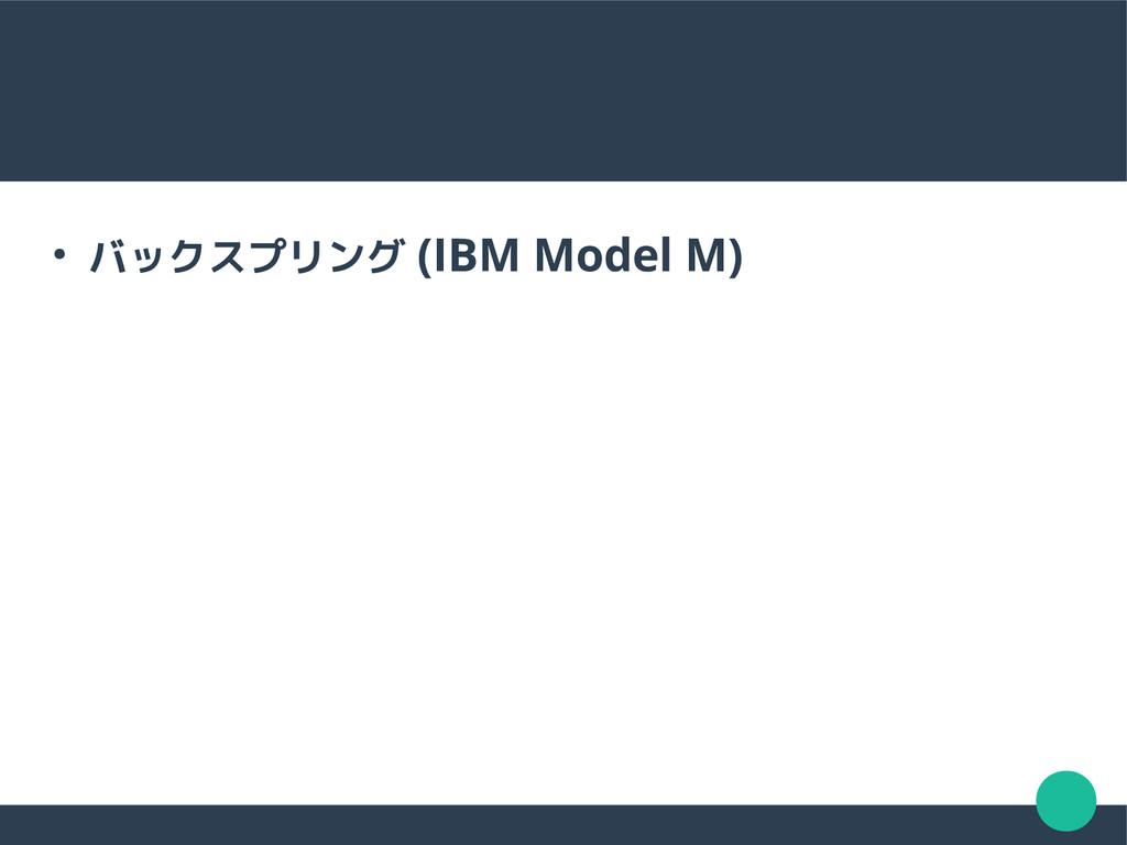 ● バックスプリング (IBM Model M)