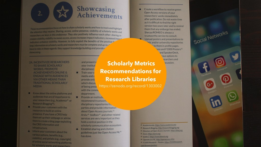 Scholarly Metrics Recommendations for Research ...
