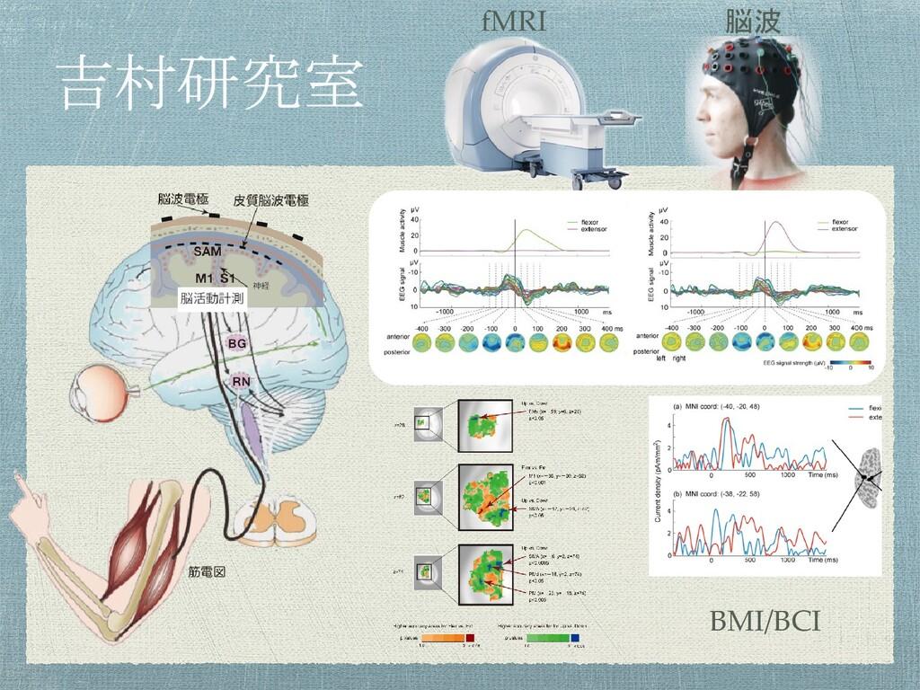 BMI/BCI fMRI 脳波