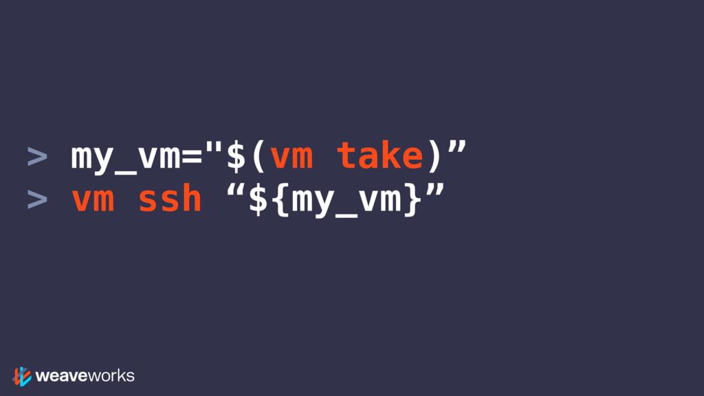 """> my_vm=""""$(vm take)"""" > vm ssh """"${my_vm}"""""""