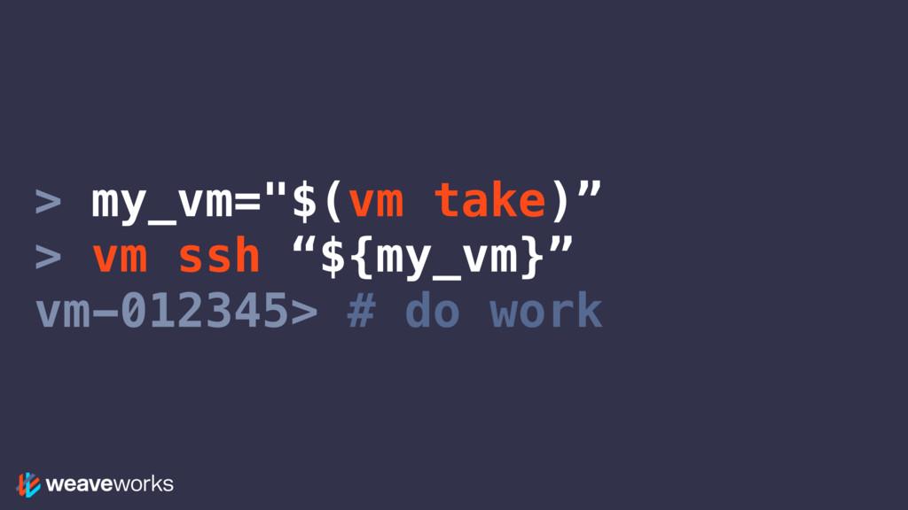 "> my_vm=""$(vm take)"" > vm ssh ""${my_vm}"" vm-012..."