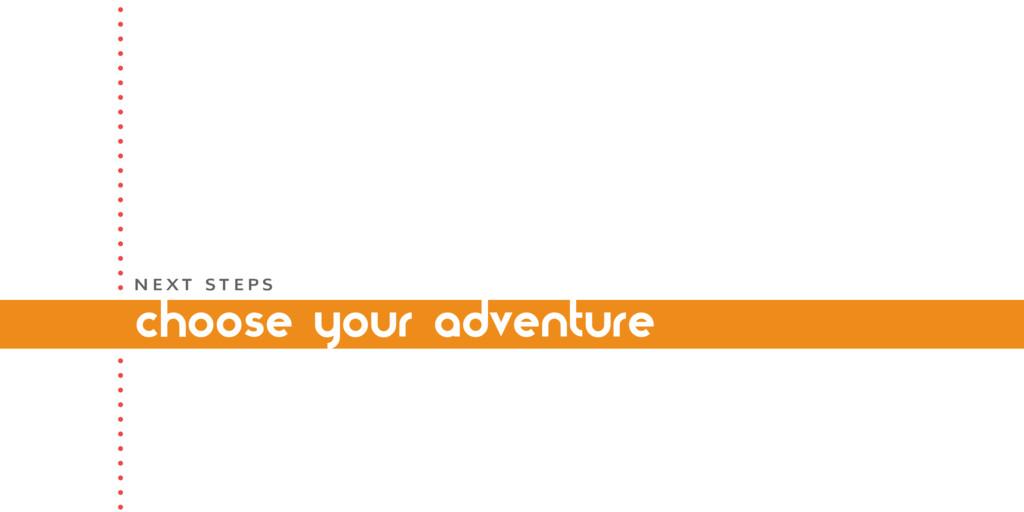 choose your adventure N E X T S T E P S