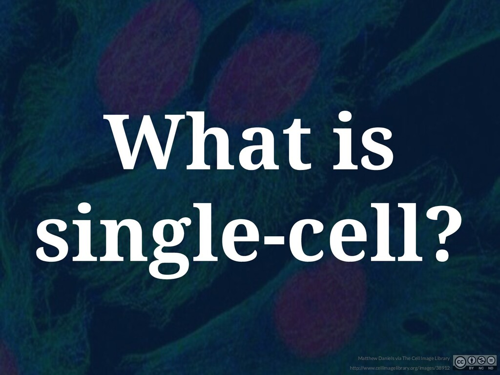 What is single-cell? Matthew Daniels via The Ce...