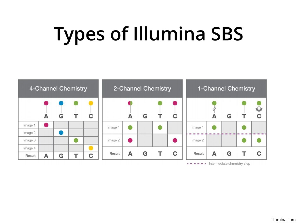 Types of Illumina SBS illumina.com