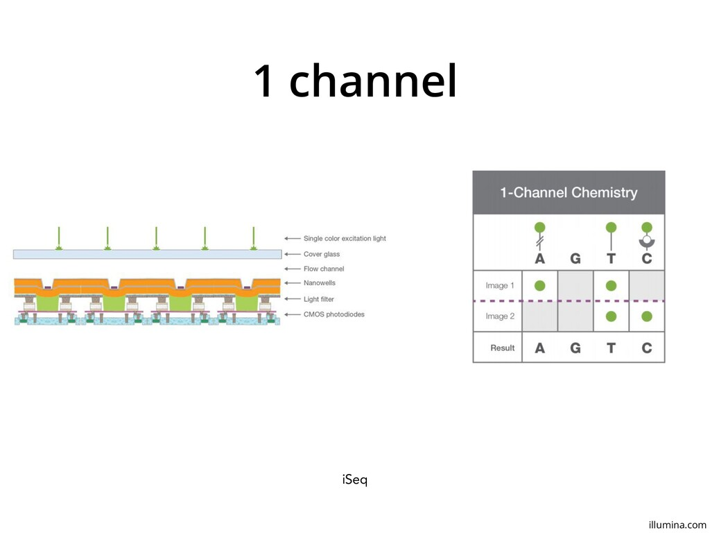 1 channel iSeq illumina.com