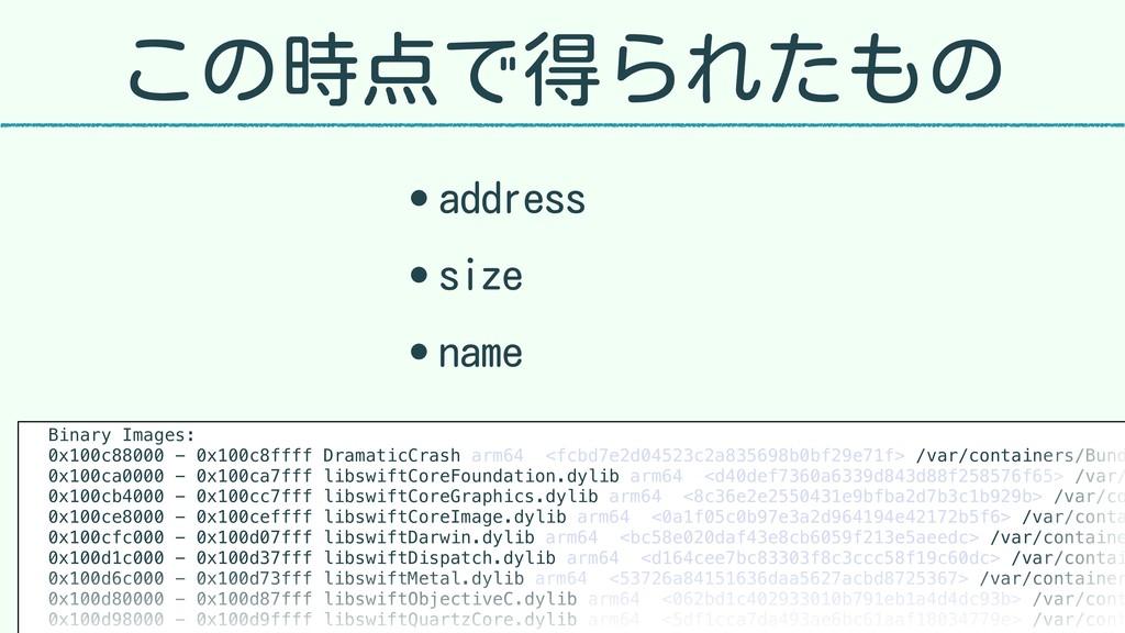 この時点で得られたもの • address • size • name Binary Imag...