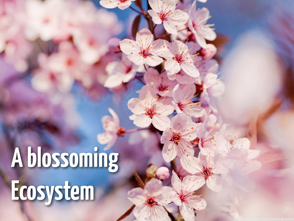 A blossoming Ecosystem