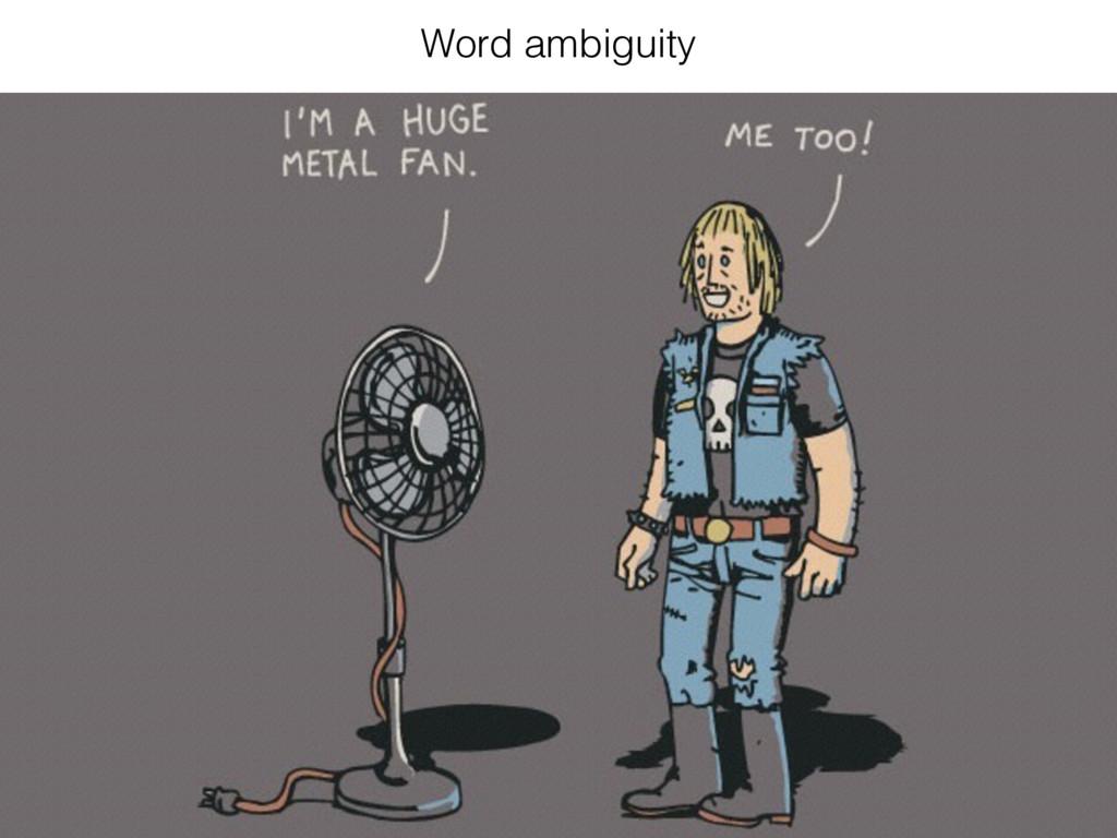 Word ambiguity